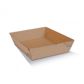 Tray 2 / Brown Corrugated Kraft / Print